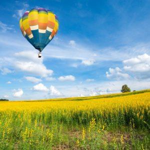 Hot Air Balloon Burgundy