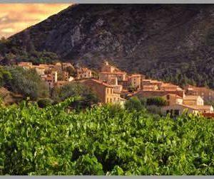 St Chinian & Coteaux de Languedoc Wine Tour