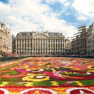 shutterstock_17219980 brussels flower carpet