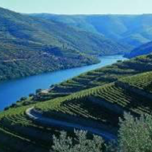douro valley 2